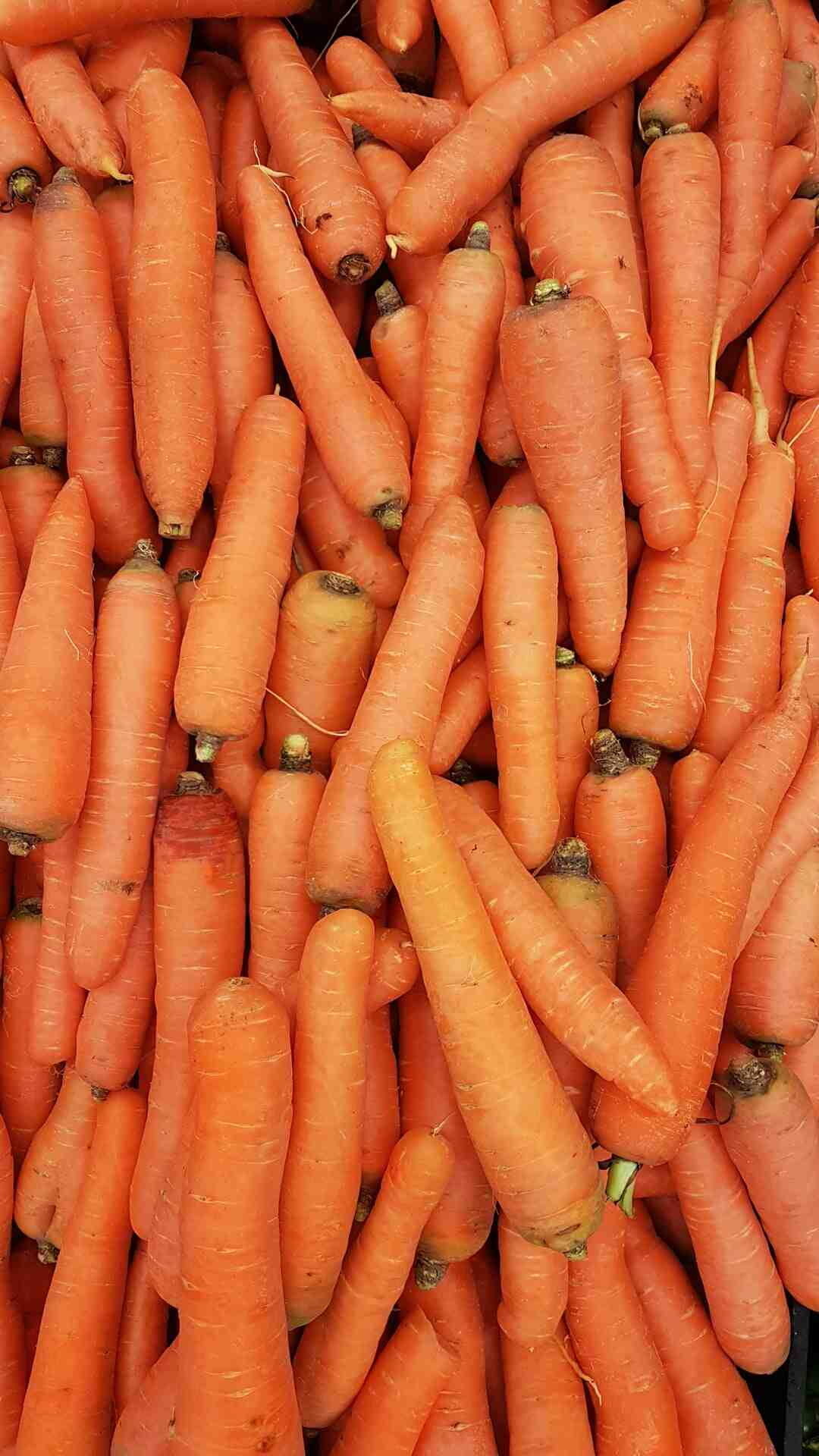 Comment éplucher une carotte