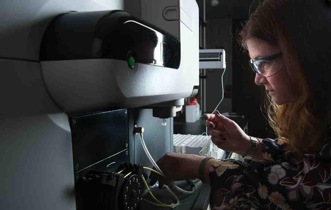 Comment faire des nouilles ramen au micro ondes